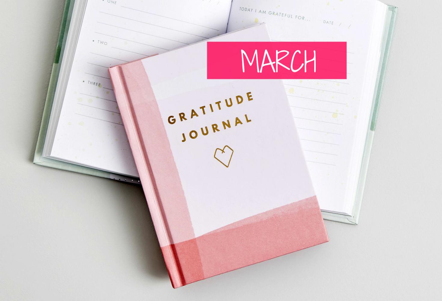 gratitude journal march chanelle hayley